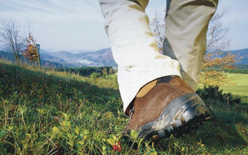 Aktivurlaub: Wandern im Sauerland
