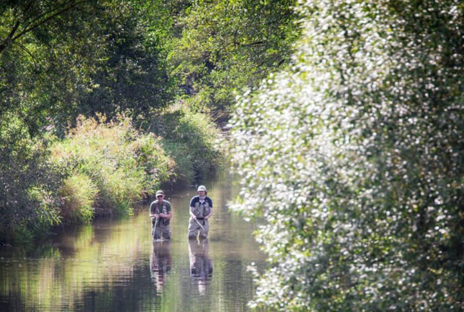 Fliegenfischer Urlaub im Sauerland