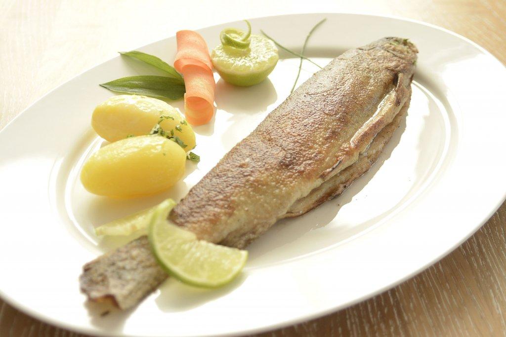 Forelle - heimisch -Fischgericht